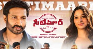 Seetimaarr 9 Days Total Collections