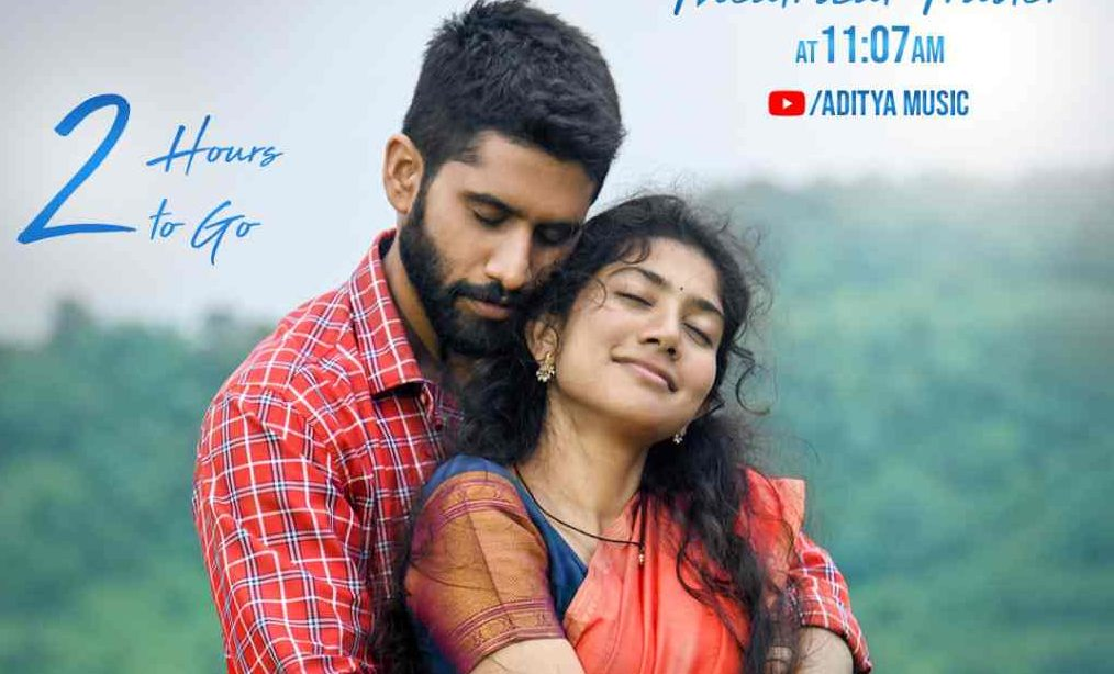 Love Story 13 Days Total Collections!!